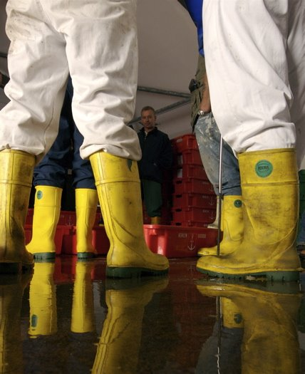 Through the gaps newlyn fishing news new year new for Commercial fishing boots