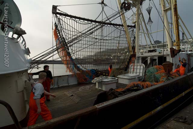 Through the gaps newlyn fishing news on a misty Jubilee swimming pool bristol timetable