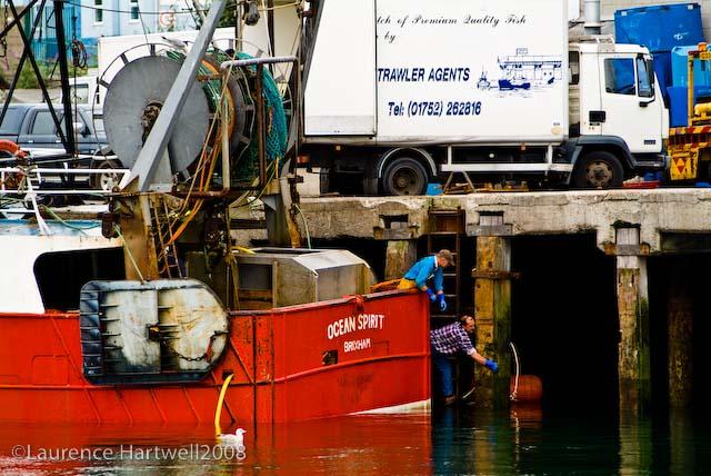 Through The Gaps Newlyn Fishing News 13 07 08 20 07 08