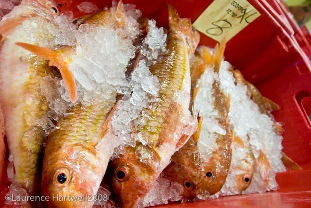 Jj Fish Market Long Beach Ca