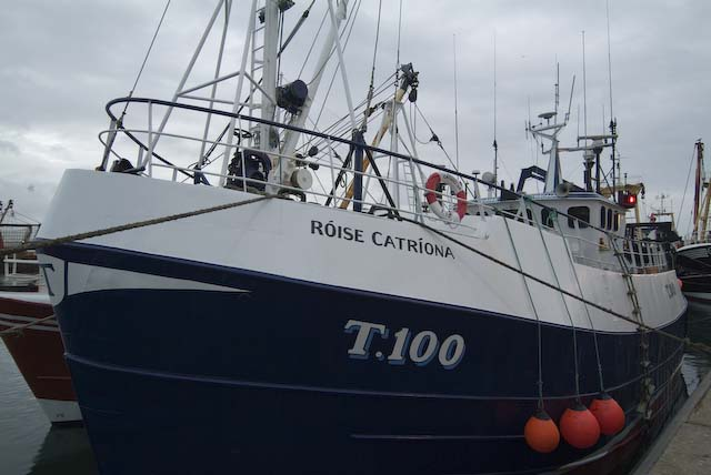 Through the Gaps! - Newlyn Fishing News: A rare Irish visitor ...