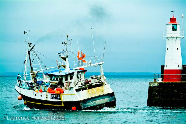 Image result for newlyn gaps sowenna